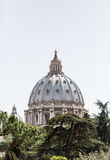 Dome of Saint Peters Rising From Trees Royalty Free Stock Photos