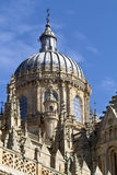 Dome of the Salamanca cathedral Stock Image