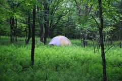 Dome tent Royalty Free Stock Images