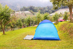 Dome tent on the lawn royalty free stock photography