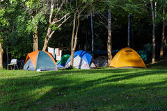 Dome tents in forest camp Stock Photos