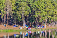 Dome tents beside the lake with reflection Royalty Free Stock Images