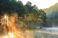 Dome tents in the mist at sunrise Royalty Free Stock Photography