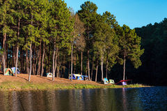 Dome tents near lake and pine trees in camping site at Pang Ung Royalty Free Stock Image