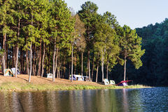 Dome tents near lake and pine trees in camping site at Pang Ung Royalty Free Stock Photography