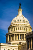 The dome of the United States Capitol, in Washington, DC. Stock Photography