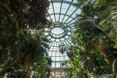 The domed ceiling of the Winter Garden, part of the Royal Greenhouses at Laeken, Brussels, Belgium.