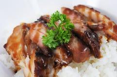 Domein van de varkensvlees het verse witte rijst stock foto's