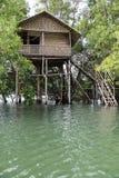 Domek na drzewie na Neyyar rzece Fotografia Royalty Free