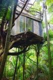 Domek na drzewie w dżungli Zdjęcia Royalty Free