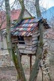 Domek na drzewie z dachowymi płytkami budować wokoło drzew Obrazy Royalty Free