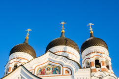 Domes of Alexander Nevsky Cathedral in Tallinn. Royalty Free Stock Photography