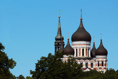 Domes of Alexander Nevsky Orthodox Cathedral in the Old Town of Tallinn, Estonia. Royalty Free Stock Photo