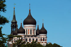 Domes of Alexander Nevsky Orthodox Cathedral and spire of St. Mary Church in the Old Town of Tallinn, Estonia Royalty Free Stock Photography