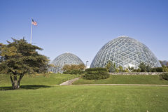 Domes of a Botanic Garden Royalty Free Stock Image