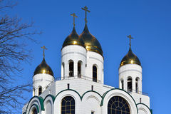 Domes of Cathedral of Christ the Saviour. Kaliningrad, Russia Royalty Free Stock Photos