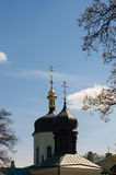 Domes. Of cathedral in spring park of Kiev Stock Photography