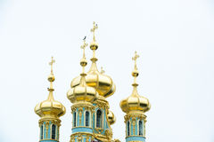 Domes Catherine Palace, St. Petersburg Stock Image