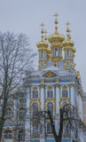Domes of the Catherine Palace, twilight. Catherine's Palace in Tsarskoe Selo (Pushkin), Russia Royalty Free Stock Photo
