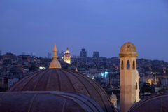 Domes and Galata Tower Royalty Free Stock Photo
