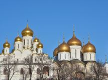 Domes of the Kremlin churches. Stock Image