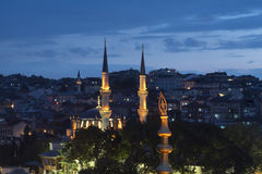 Domes and New Valide Mosque Stock Photos