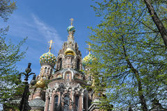 Domes of Orthodox Church of the Savior on blood Royalty Free Stock Photos