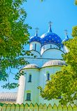 The domes of Suzdal Nativity Cathedral. The blue domes of Nativity Cathedral of Suzdal Kremlin are decorated with golden stars and surrounded by lush trees Royalty Free Stock Photo