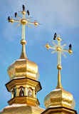 Domes Temple of Kiev-Pechersk Lavra Royalty Free Stock Photos