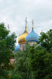 The domes of Uspensky Cathedral of Ryazan Kremlin Royalty Free Stock Photos