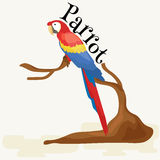 Domestic animal,  macaw parrot with beak and wings, pets background, tropical bird on white vector illustration Stock Photography