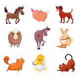 Domestic Animals and Birds Vector Illustrations Royalty Free Stock Image