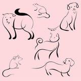 Domestic Animals Design Set Royalty Free Stock Image