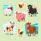 Domestic Animals Icon Farm Breeding Royalty Free Stock Image