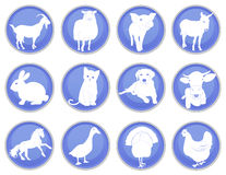Domestic animals icon set 1 Stock Photos