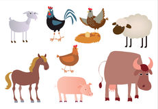 Domestic Animals. Illustration of 8 Security Camera Stock Photos