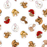 Domestic animals pattern Stock Image