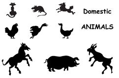 Domestic animals silhouettes Stock Image
