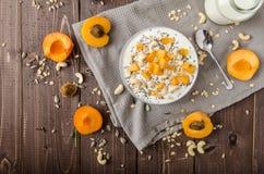 Domestic apricots musli yogurt Royalty Free Stock Image