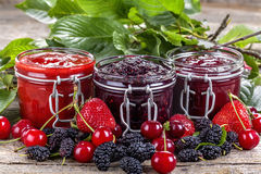 Domestic berry jam Royalty Free Stock Image