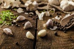 Domestic bio garlic - Czech, spices and fresh microgreens Domestic bio garlic Royalty Free Stock Photos
