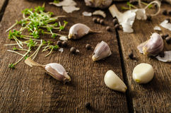 Domestic bio garlic - Czech, spices and fresh microgreens Domestic bio garlic Royalty Free Stock Photography