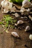 Domestic bio garlic - Czech, spices and fresh microgreens Domestic bio garlic Stock Photos