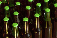 Domestic bottled beer Royalty Free Stock Photos