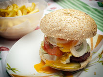Domestic burger Stock Images