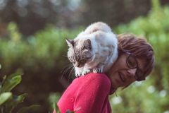 Domestic cat playing on the shoulder of smiling beautiful woman. Outdoor setting in home garden. Royalty Free Stock Images