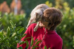 Domestic cat playing on the shoulder of smiling beautiful woman. Outdoor setting in home garden. Royalty Free Stock Photos