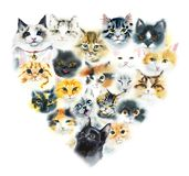 Domestic cats. Cats background. Watercolor hand drawn illustration royalty free stock image