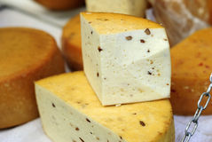 Domestic cheese Stock Photography