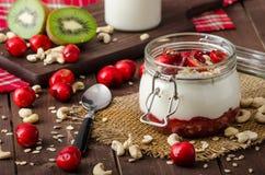 Domestic cherry yogurt Stock Image